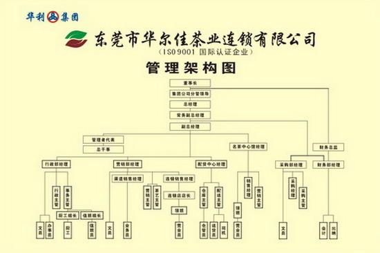 公司管理架構圖_公司管理組織架構圖圖片